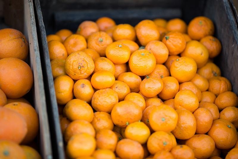 vitamine C compléments alimentaires